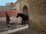 Marocco passaggi (4)